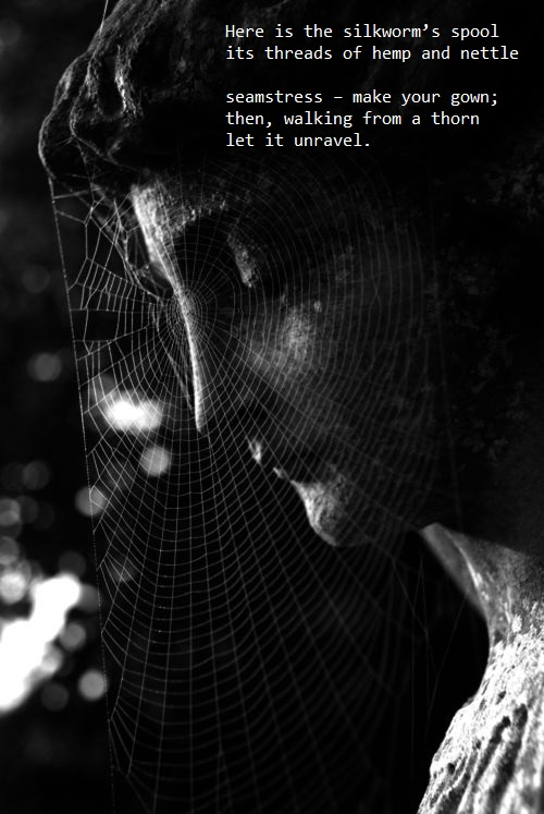 veils 13 lines